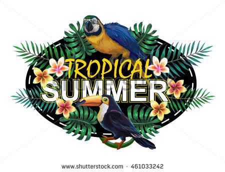 Neotropical Stock Photos, Royalty.