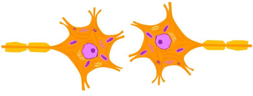 you've got nerve ! (actually, you've got nerve receptors.