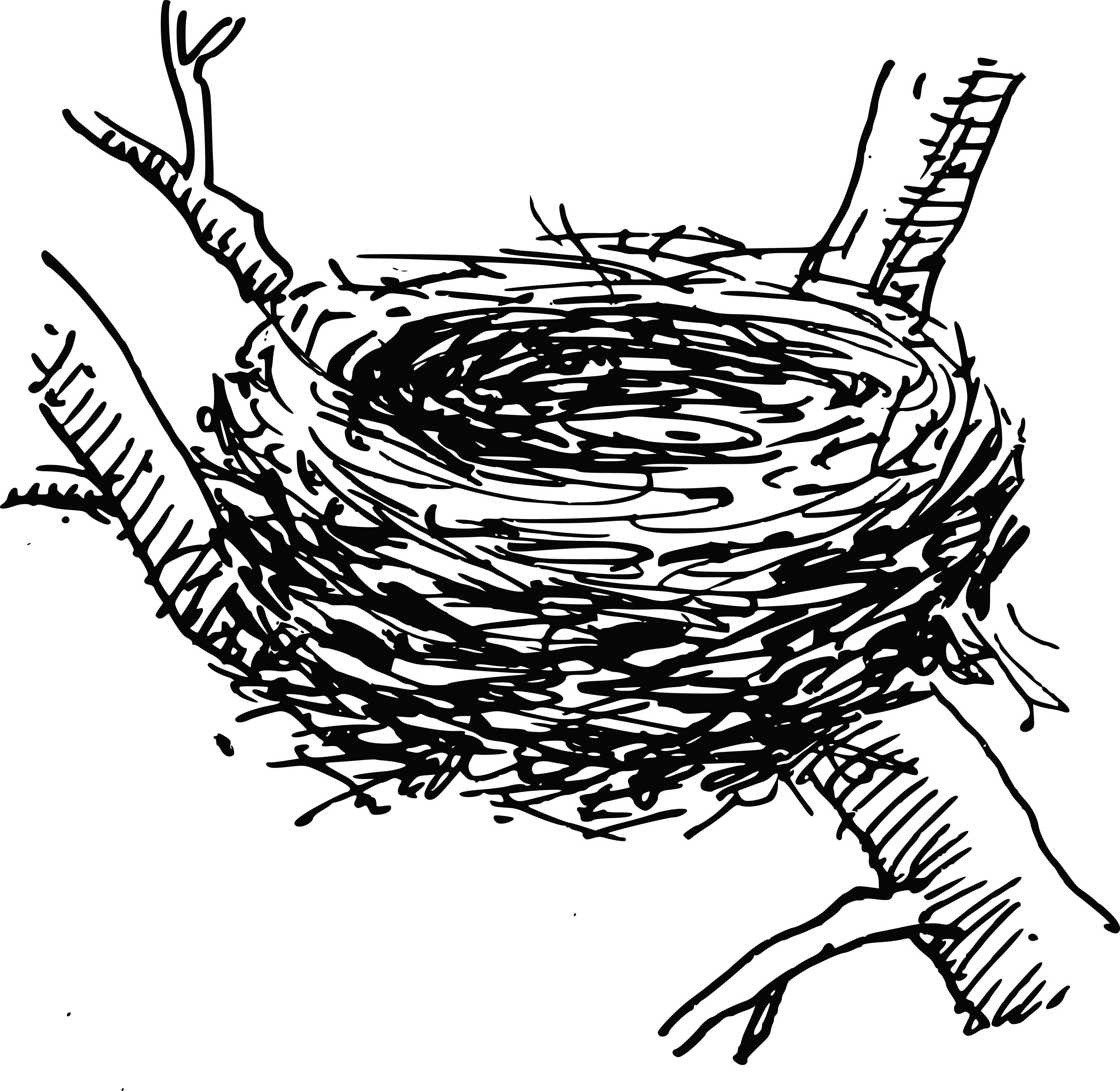 Black And White Clipart Nest.