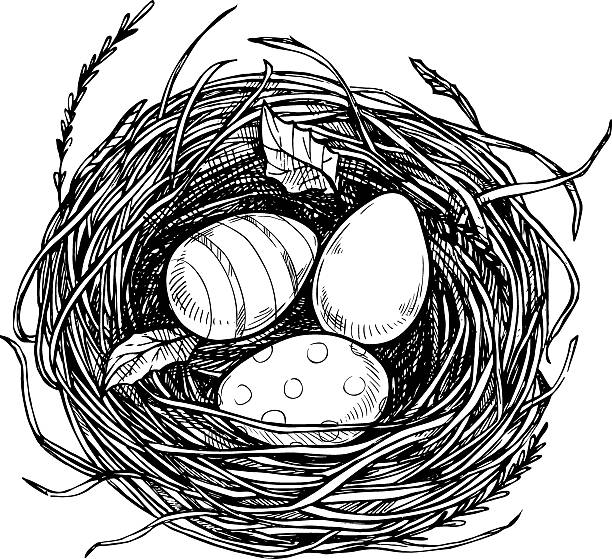 Bird nest clipart black and white 5 » Clipart Station.