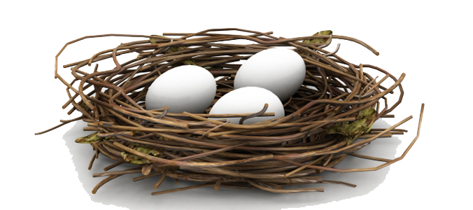 Download Nest PNG HD.
