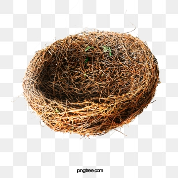 Bird Nest PNG Images.