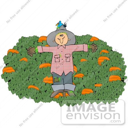 Clip Art Graphic of a Scarecrow With A Bird Nesting In His Hat, On.