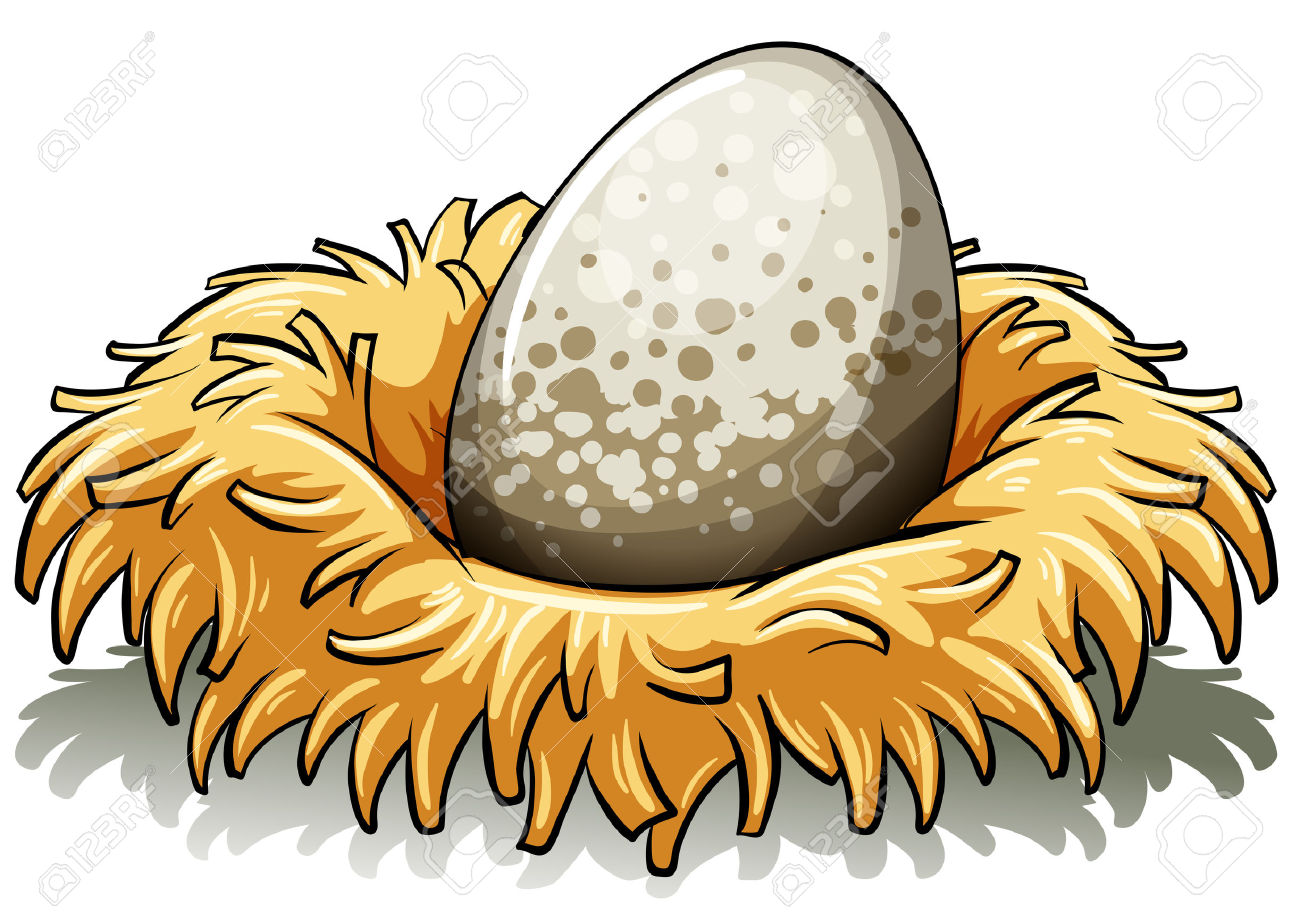 6,646 Bird Nest Stock Illustrations, Cliparts And Royalty Free.