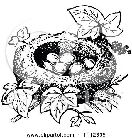 Nesting sites clipart #19