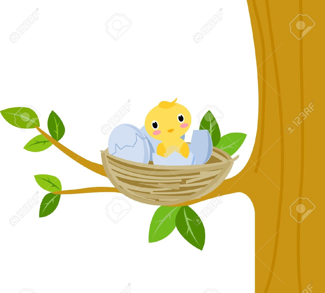Nest With Baby Birds Royalty Free Cliparts, Vectors, And Stock.