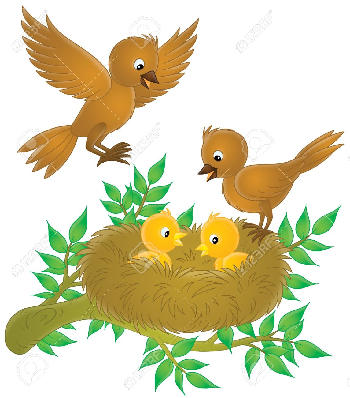 Birds And Nestlings Stock Photo, Picture And Royalty Free Image.