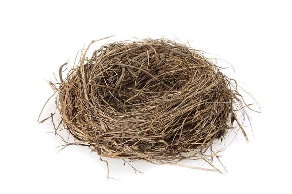 Clipart empty nest.