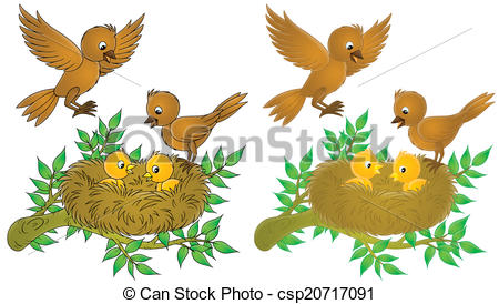 Stock Illustration of Birds and nestlings.