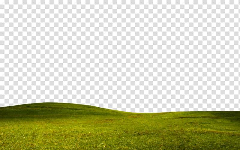 Grassland Meadow Lawn, Grass border texture E net material.