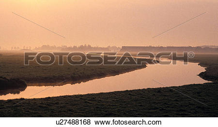 Pictures of calf, holland, landscape, more water, nature.