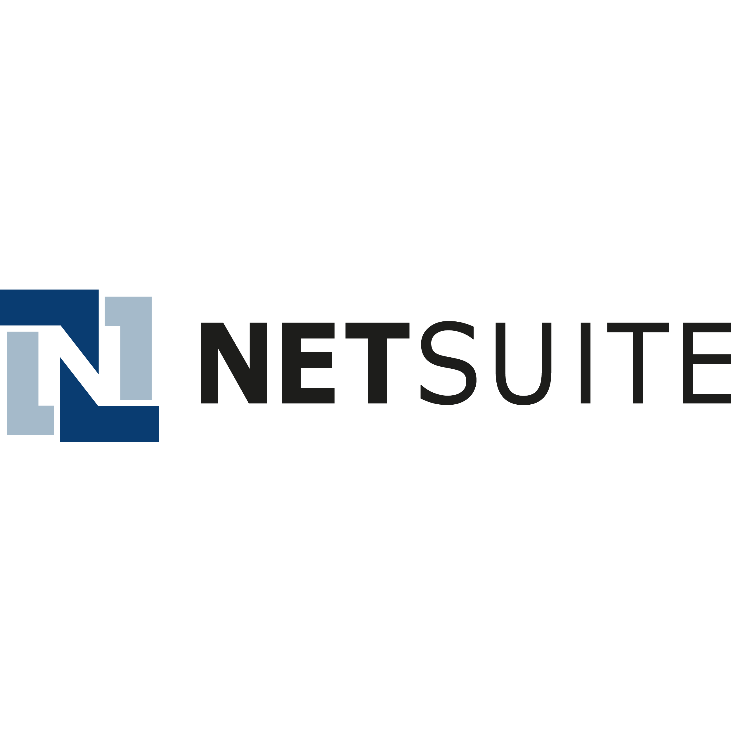 NetSuite ERP Review.