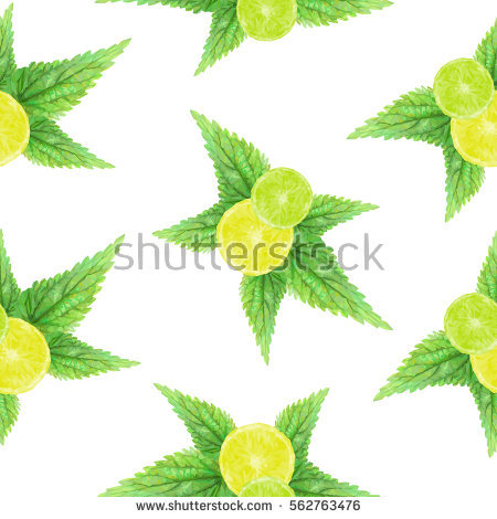 Nettle Leaf Stock Vectors, Images & Vector Art.