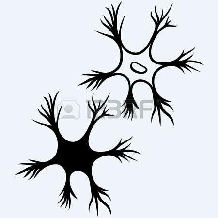 198 Neuron Vector Cliparts, Stock Vector And Royalty Free Neuron.