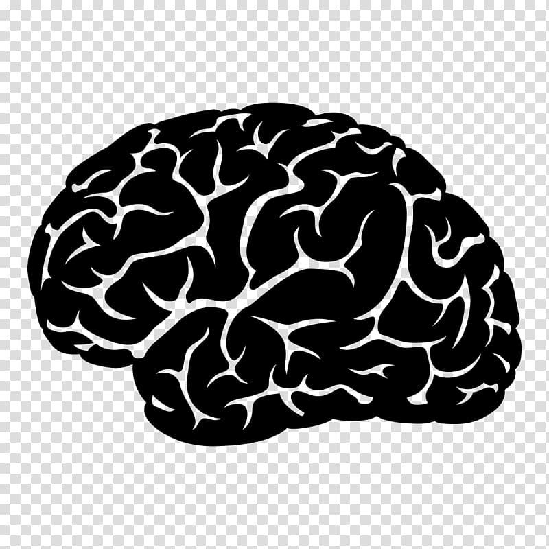 Neuroacupuncture Institute Traumatic brain injury Neurology.