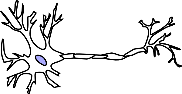 Neuron Clipart together with Neuron Clipart in addition Cool Background Images For S additionally A Stickers Arbre 24162 also A Stickers Chevaux 9821. on vector galaxy s5