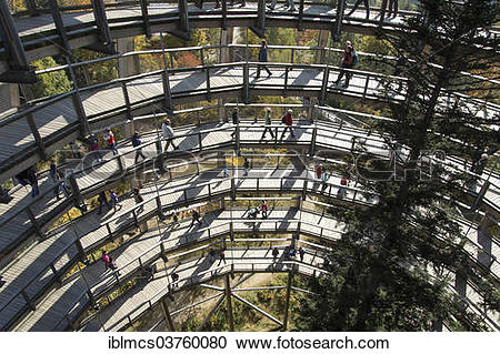 "Stock Photography of ""Tree tower, Tree Top Walk, Bavarian Forest."