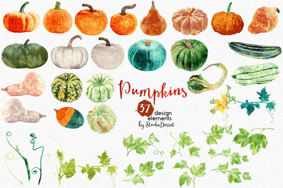 Pumpkins Clipart Watercolor Pumpkin Clip Art by StudioDesset.