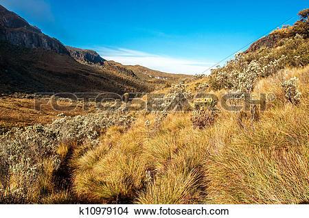 Drawings of Landscape at Nevado del Ruiz k10979104.