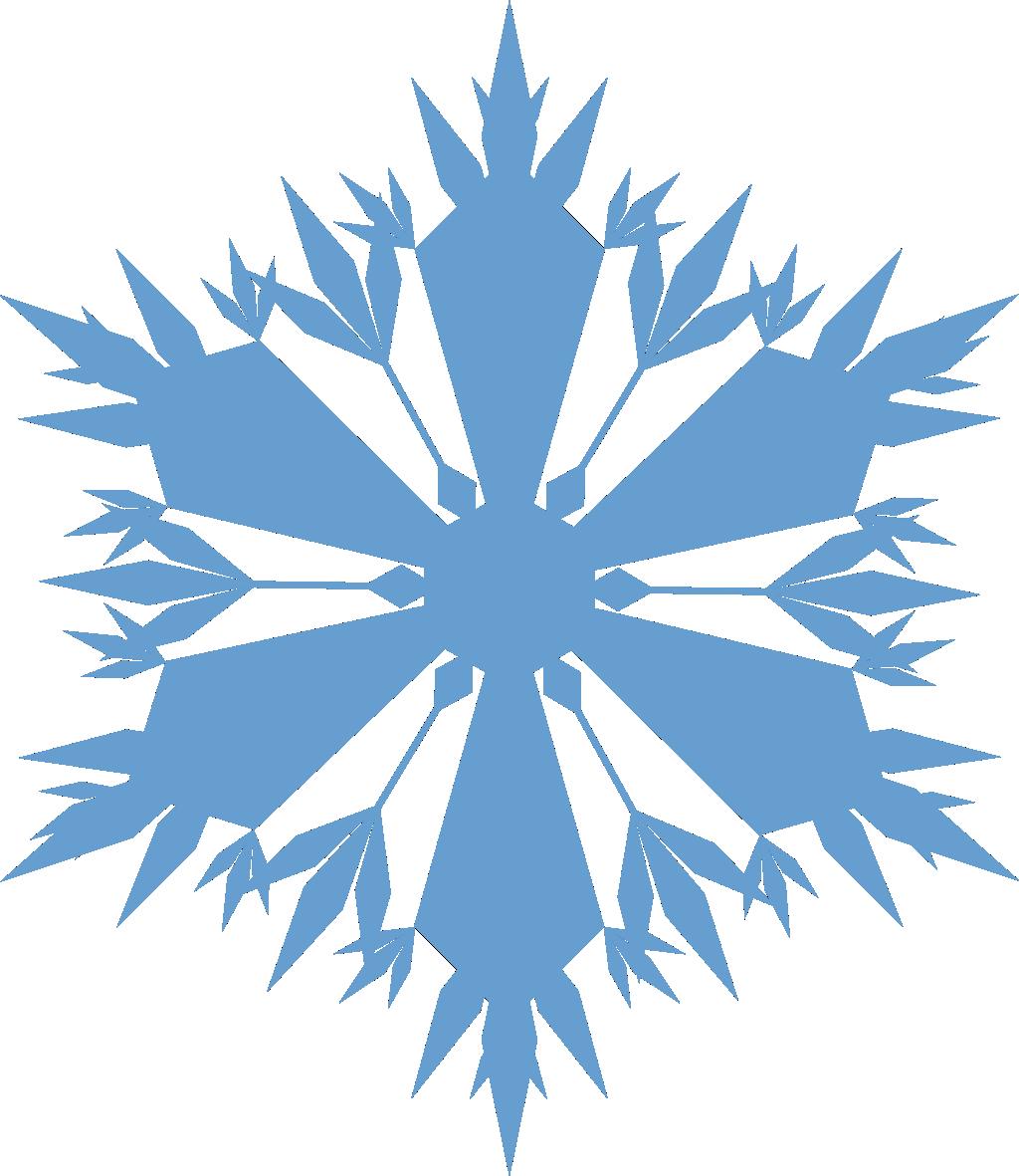 Floco de Neve 08.
