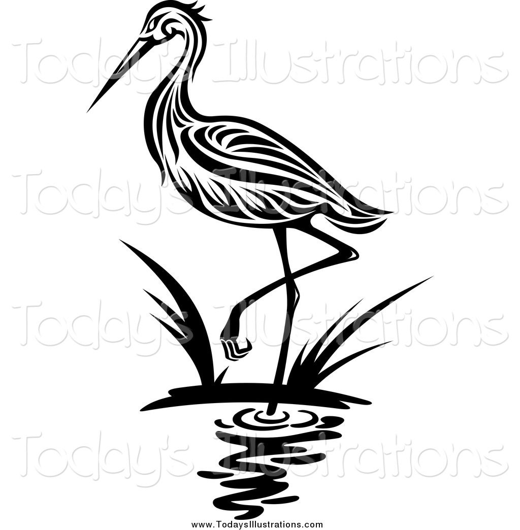 Royalty Free Egret Stock New Designs.