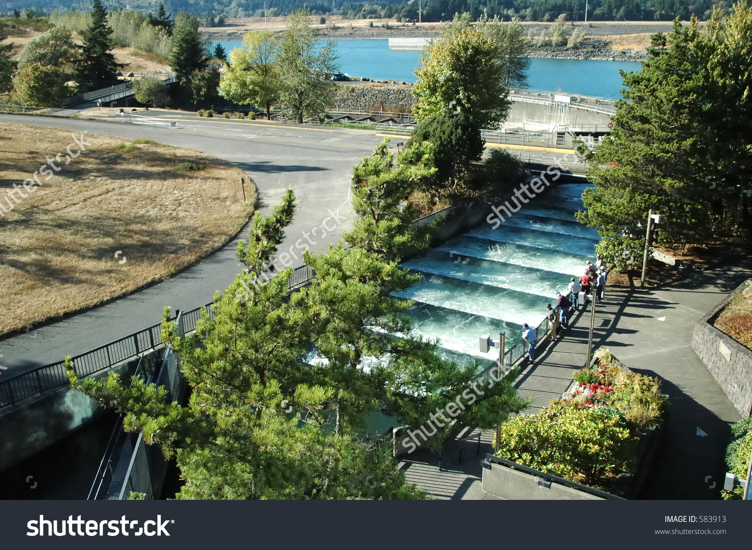 Fish Ladder At Bonneville Dam In Oregon Stock Photo 583913.