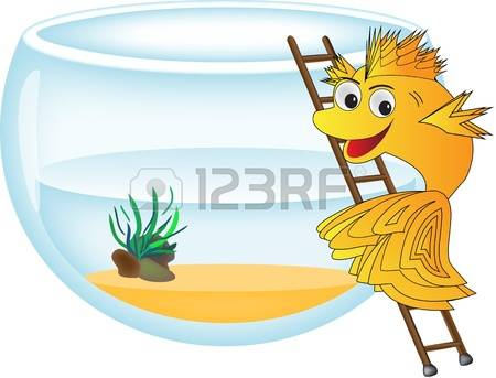 Fish Ladder Stock Photos Images. Royalty Free Fish Ladder Images.