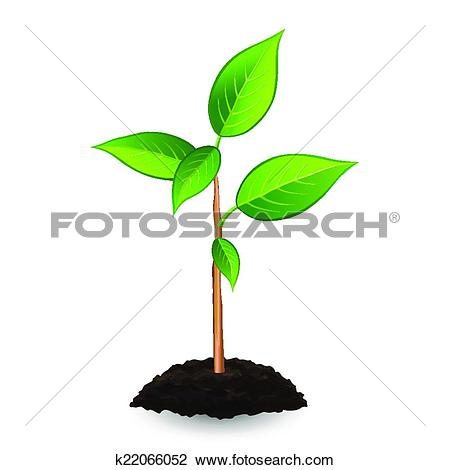 Clipart of New green sprout and soil, isolated on white background.