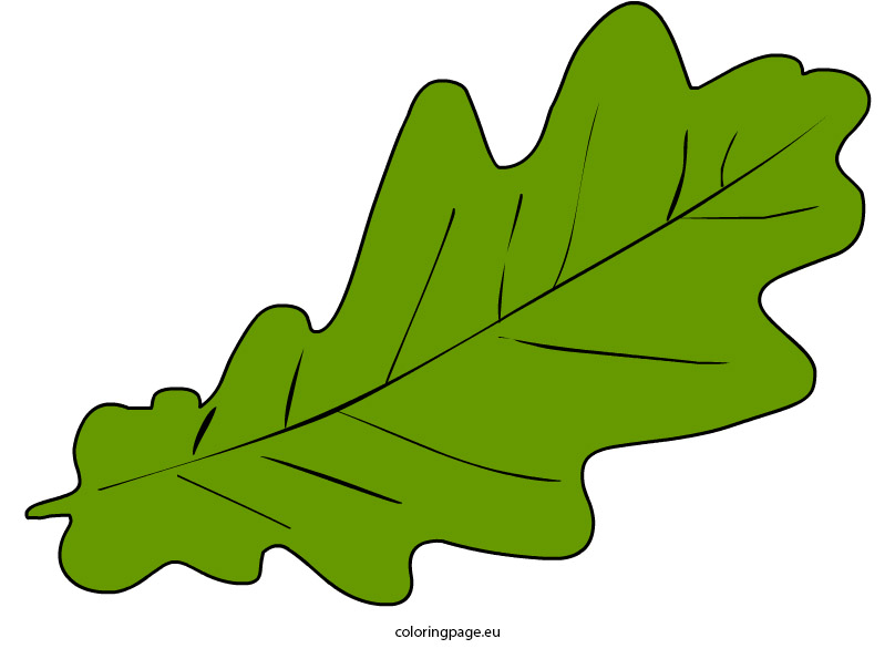 Autumn leaf clip art.