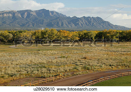 Stock Photography of Road near and forest near Sandia mountains.