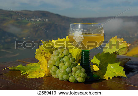 Stock Photograph of new wine 06 k2569419.