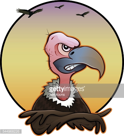 New World Vulture Stock Illustrations And Cartoons.