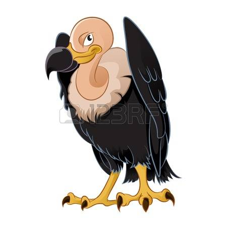 New World Vulture Stock Photos Images, Royalty Free New World.