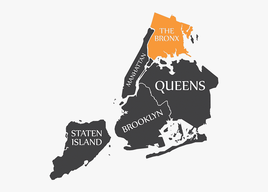 Dna Testing In The Bronx.