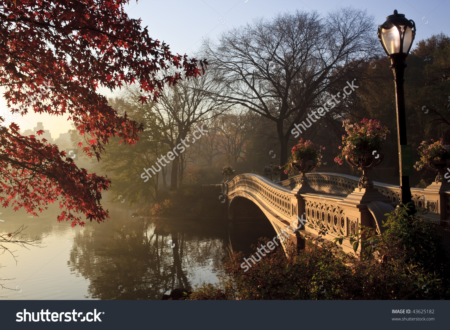 Early Morning In The Fog In Central Park New York City By The Bow.