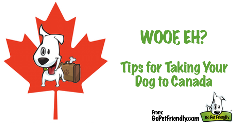Updated: Taking Your Dog to Canada.