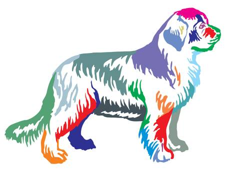 381 Newfoundland Dog Cliparts, Stock Vector And Royalty Free.