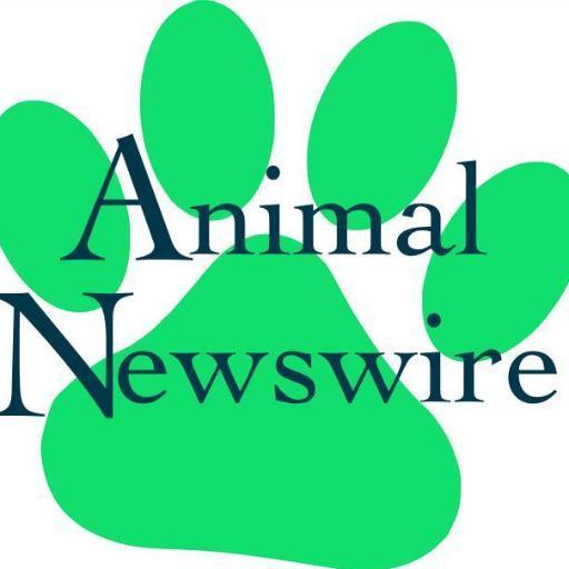 Animal Newswire (@animal_newswire).