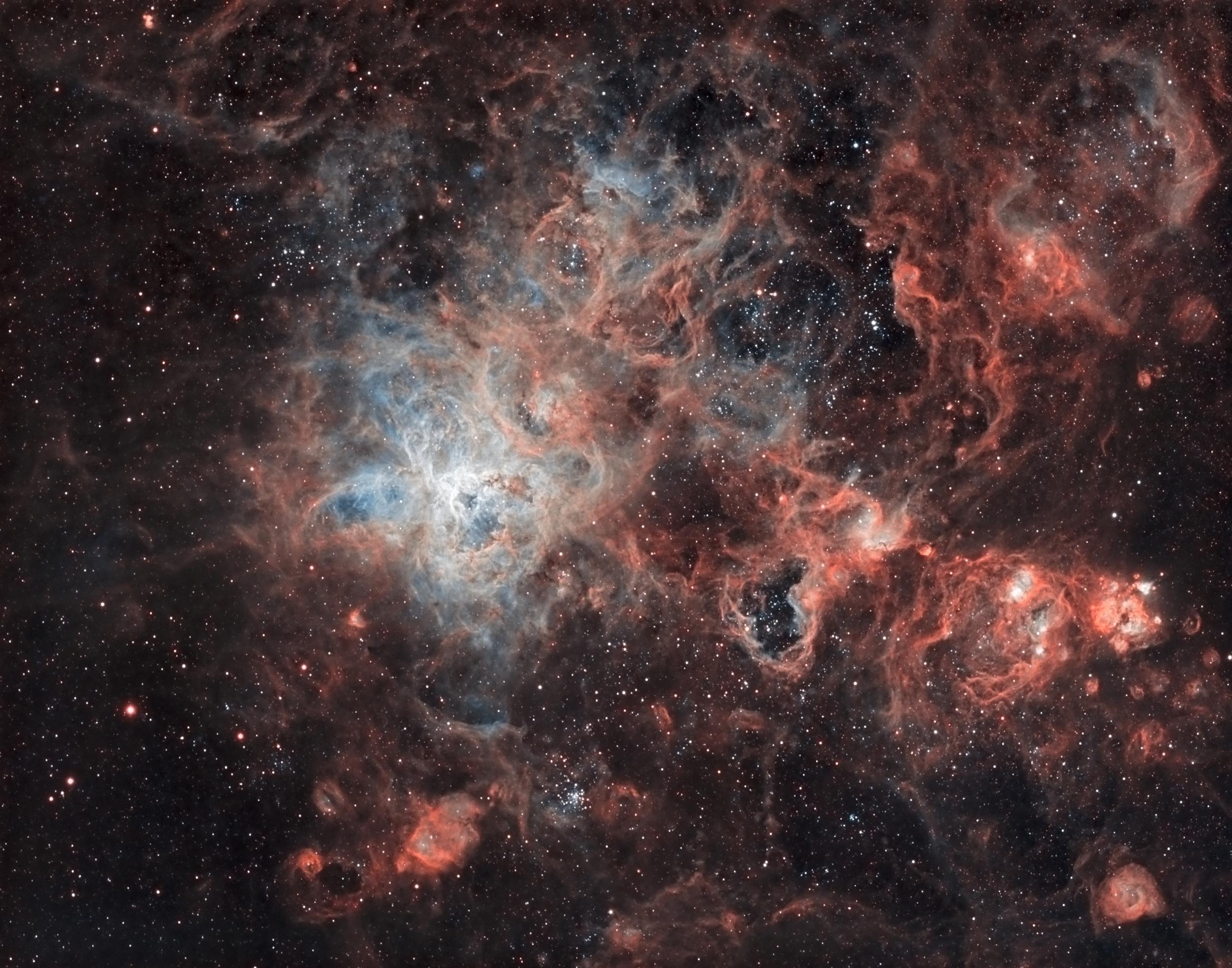 The Tarantula Nebula (NGC 2070).