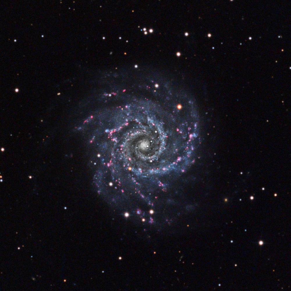 M74 (NGC 628).