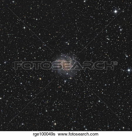 Stock Images of Spiral galaxy NGC 6946 rge100049s.