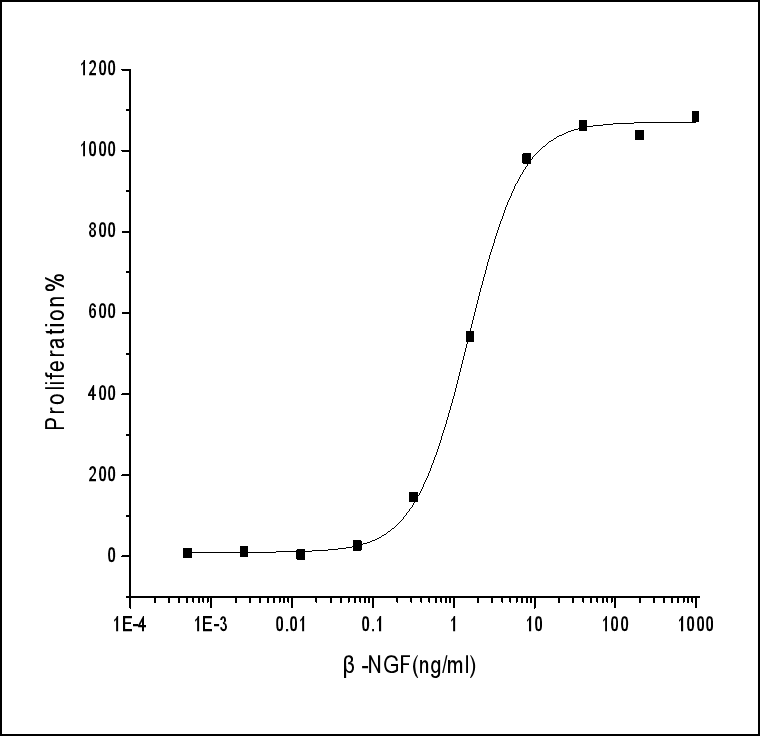 NGF Protein, Human, Recombinant.