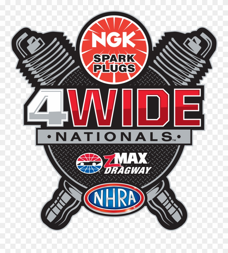 Ngk Spark Plugs For Harley.