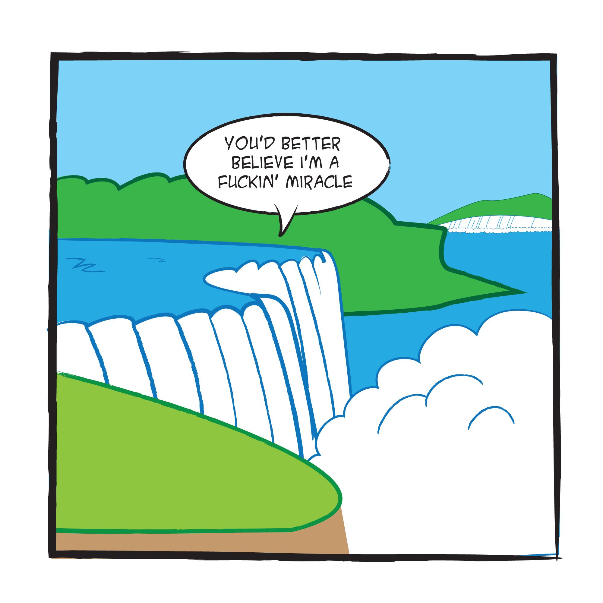 Niagara Falls Cartoon.