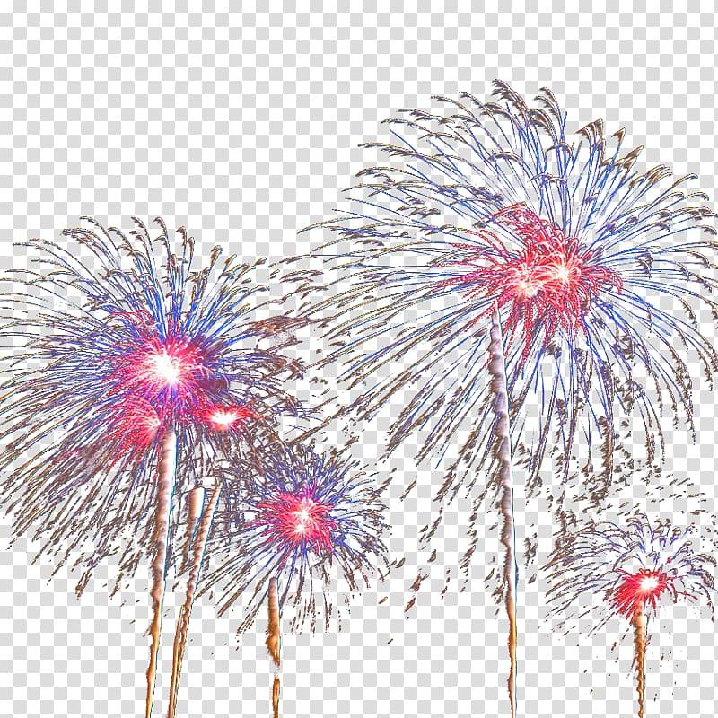 Nice Fireworks Pyrotechnics, Nice fireworks transparent.