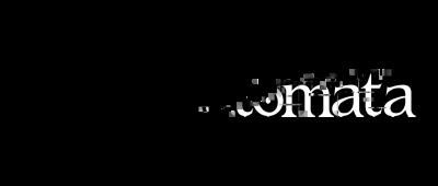 Nier automata logo png AbeonCliparts.