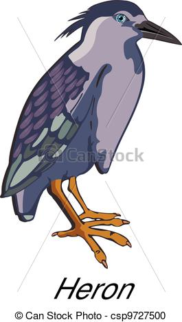 Vector Clipart of Night Heron or Nycticorax sp., illustration.