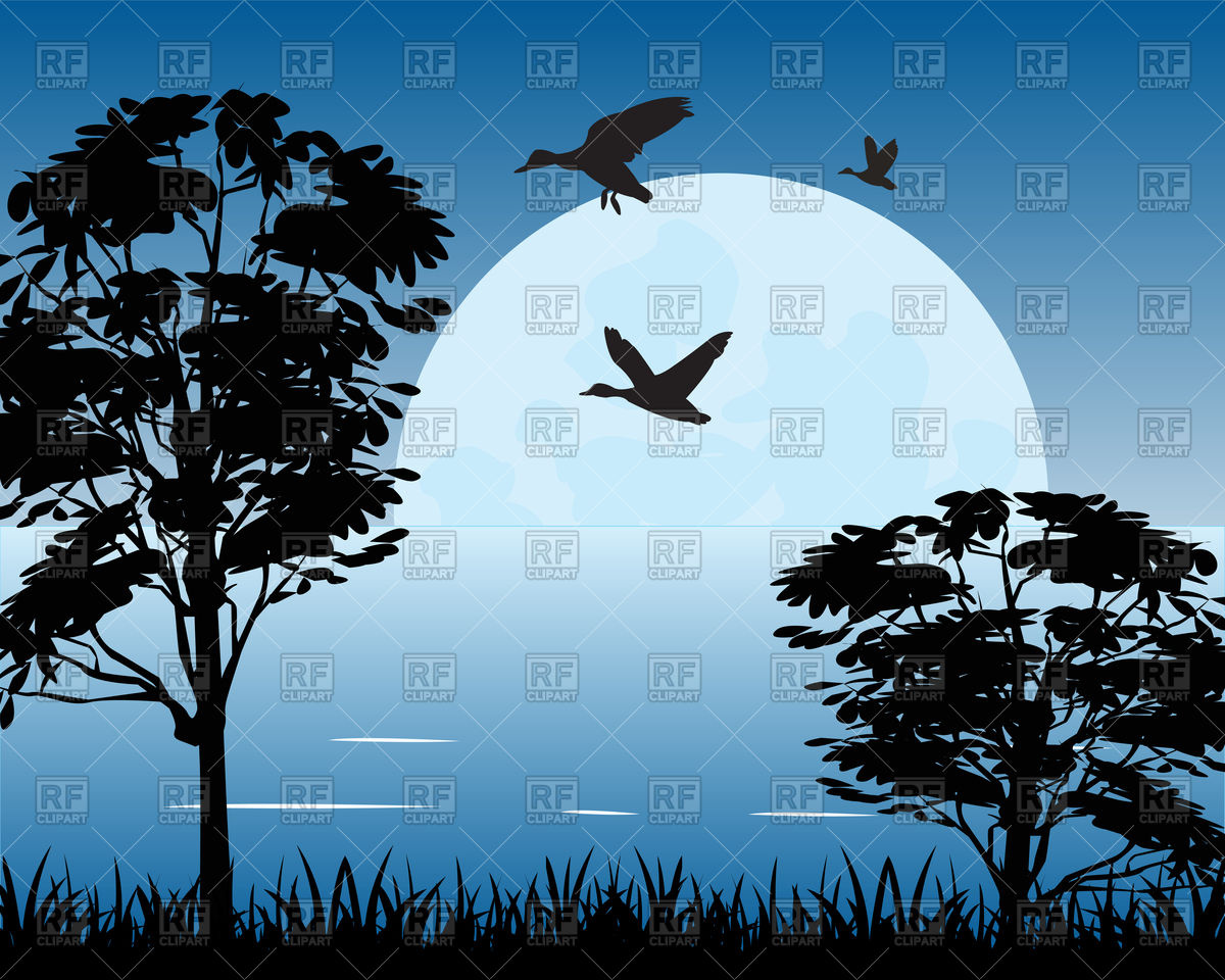 Beautiful night landscape with moon on lake Vector Image #91610.