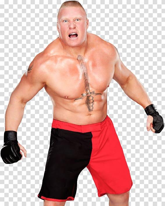 Brock Lesnar SummerSlam (2012) WWE Raw WWE Night of.