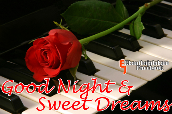Night Rose Clipart Clipground